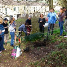 Community gardening: a chance to chat