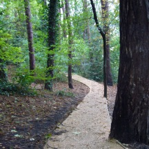 New path to Magdalen Gdns